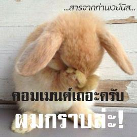 http://cdn-th.tunwalai.net/files/member/831305/1111475312-member.jpg