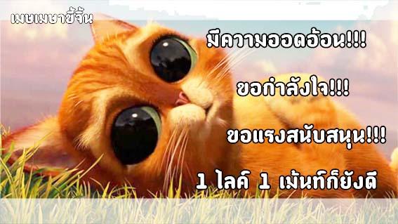 http://cdn-th.tunwalai.net/files/member/831397/2101447032-member.jpg