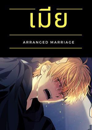 เมีย (Arranged marriage), YAOI, Mpreg, ท้องได้